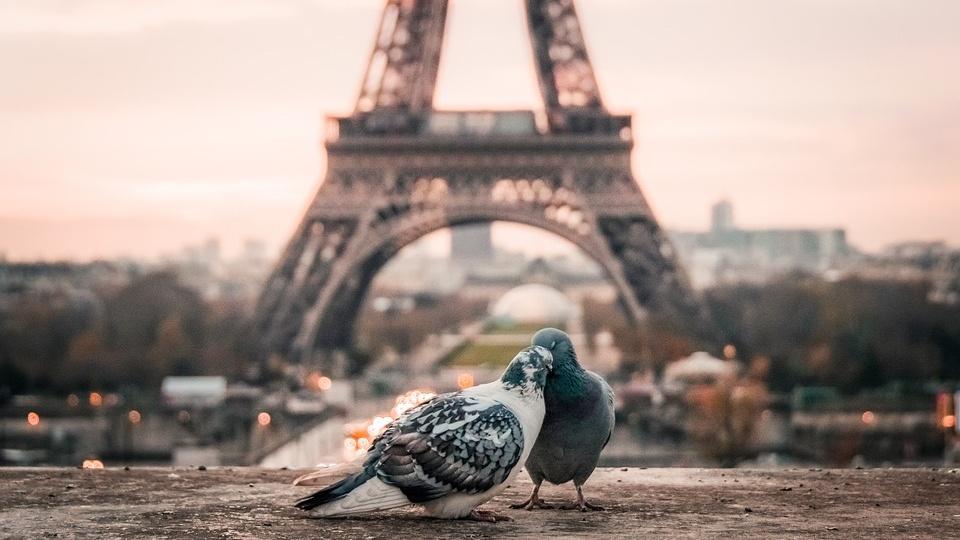 Intalnirea franceza a omului
